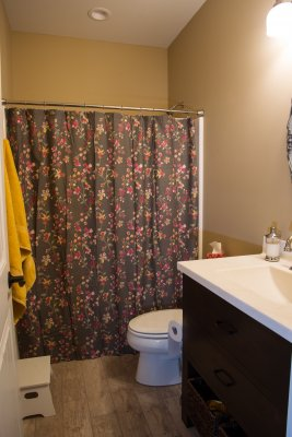 Patio House Bathroom, Sartell MN